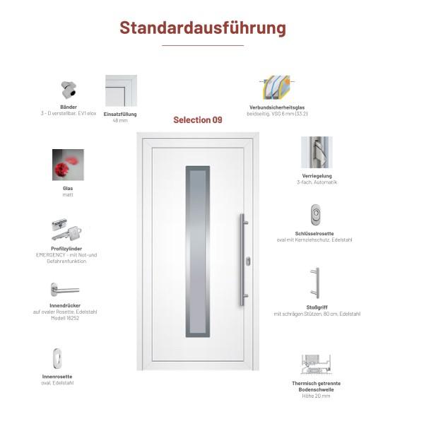"Aluminium Haustür ""Selection 09"" - Maße 1106 mm x 2166 mm"